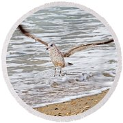 Graceful Landing Round Beach Towel by Betsy Knapp