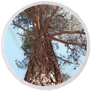 Graceful Tree Round Beach Towel
