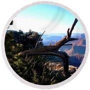 Grand Canyon Dead Tree Round Beach Towel by Matt Harang