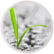 Grass In Asphalt Round Beach Towel