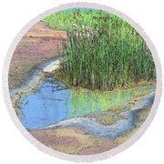 Grass Growing On Rocks Round Beach Towel by Teresa Zieba