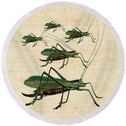Grasshopper Parade Round Beach Towel by Antique Images