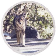 Coyote And Me At Vernal Falls Round Beach Towel by Debby Pueschel