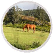 Round Beach Towel featuring the photograph Grazing by Cheryl Hoyle
