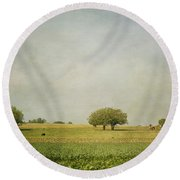 Round Beach Towel featuring the photograph Grazing by Kim Hojnacki
