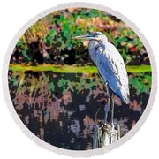 Great Blue Heron At The Pond Round Beach Towel