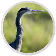 Great Blue Heron Backlit Round Beach Towel