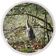 Round Beach Towel featuring the photograph Great Blue Heron by Karen Silvestri
