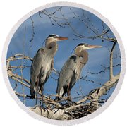 Great Blue Heron Mates Round Beach Towel