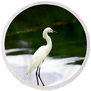 Great Egret Round Beach Towel by Debra Forand