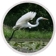 Great Egret Elegance   Round Beach Towel