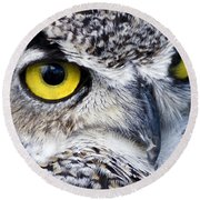 Great Horned Closeup Round Beach Towel by Dee Cresswell