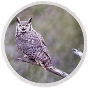 Round Beach Towel featuring the photograph Great Horned Owl by Dan McManus