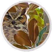Round Beach Towel featuring the photograph Great Horned Owl by Meghan at FireBonnet Art