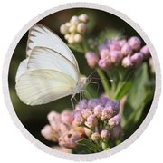 Great Southern White Butterfly On Pink Flowers Round Beach Towel