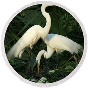 Great White Egret Mates Round Beach Towel