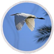 Round Beach Towel featuring the photograph Great White In Flight by Penny Meyers