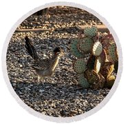 Greater Roadrunner Round Beach Towel by Robert Bales