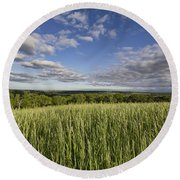 Round Beach Towel featuring the photograph Green And Blue by Daniel Sheldon