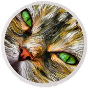 Green-eyed Tortie Round Beach Towel