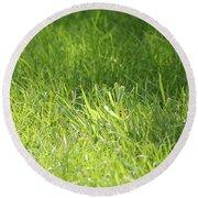 Green Grass Round Beach Towel