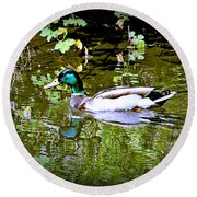 Green Head Mallard Round Beach Towel