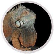 Green Iguana  Round Beach Towel by Judy Whitton