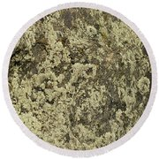 Round Beach Towel featuring the photograph Green Moss by Les Palenik