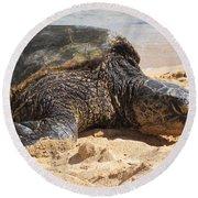 Green Sea Turtle 2 - Kauai Round Beach Towel