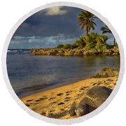 Green Sea Turtle At Sunset Round Beach Towel