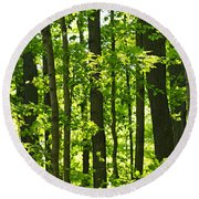 Green Spring Forest Round Beach Towel