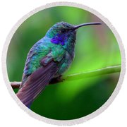 Green Violet Ear Hummingbird Round Beach Towel