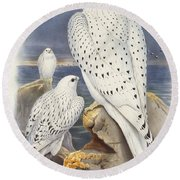 Greenland Falcon Round Beach Towel by John Gould