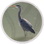 Grey Bird Round Beach Towel by Oksana Semenchenko