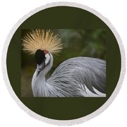 Grey Crowned Crane Round Beach Towel by Venetia Featherstone-Witty