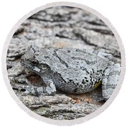 Round Beach Towel featuring the photograph Cope's Gray Tree Frog by Judy Whitton