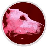 Round Beach Towel featuring the photograph Greyhound Profile by Clare Bevan