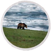 Round Beach Towel featuring the photograph Grizzly Bear On The Shoreline Of Frozen Lake Yellowstone by Shawn O'Brien
