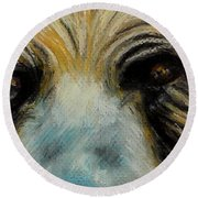 Grizzly Eyes Round Beach Towel