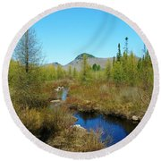 Round Beach Towel featuring the photograph Groton State Forest Moose Country by Sherman Perry