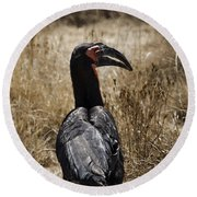 Ground Hornbill-africa Round Beach Towel by Douglas Barnard