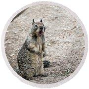 Ground Squirrel Raising A Ruckus Round Beach Towel by Susan Wiedmann