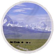 Group Of Yaks Walk Across A Green Round Beach Towel