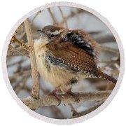 Grumpy Bird Round Beach Towel