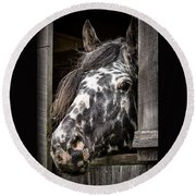 Guard Horse-what's The Password? Round Beach Towel
