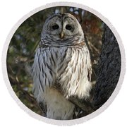 Guardian Of The Forest Round Beach Towel by Heather King