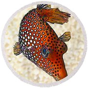 Guinea Fowl Puffer Fish Round Beach Towel