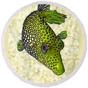 Guinea Fowl Puffer Fish In Green Round Beach Towel by ABeautifulSky Photography