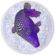 Guinea Fowl Puffer Fish In Purple Round Beach Towel