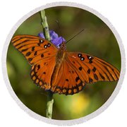 Round Beach Towel featuring the photograph Gulf Fritillary Butterfly by Meg Rousher